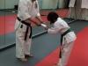 All Ranks Karate Class Promotion in Ashburn, VA