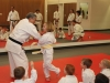 Little Pandas Martial Arts Student in Ashburn VA