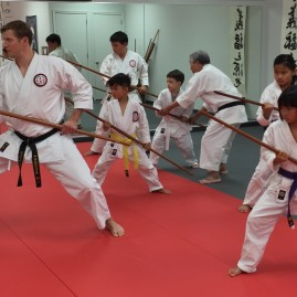 Kobudo Classes in Ashburn, VA